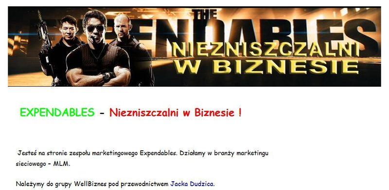 źródło: Niezniszczalni-w-biznesie.pl
